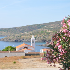 Quella strana estate all'Asinara (La Nuova Sardegna, 22 aprile 2018)