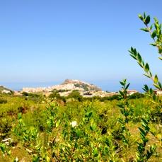 la vita a km zero (La Nuova Sardegna, 9 settembre 2014)
