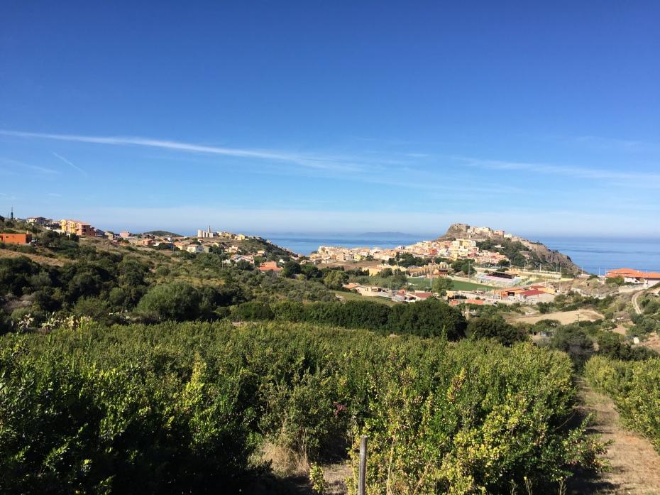 la bandiera quattro mori: simbolo di Sardegna (la nuova sardegna 10/2/2015)
