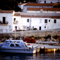 Il calendario che non cammina: fine pena mai. Storie dell'Asinara.