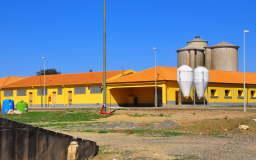 www.galeghiotto.it . Un sito da visitare perché ne vale la pena.