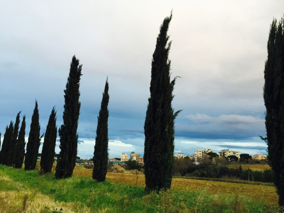 Il vecchio canto delle sirene (La Nuova Sardegna, 11 ottobre 2015)