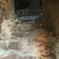 Il ritorno dell'eroina, La Nuova Sardegna, 25 ottobre 2916