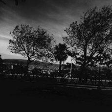 Adele e le anime morte (La Nuova Sardegna, 9 agosto 2017)