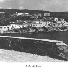 Cartoline dall'Asinara – La Nuova Sardegna 10 gennaio 2018